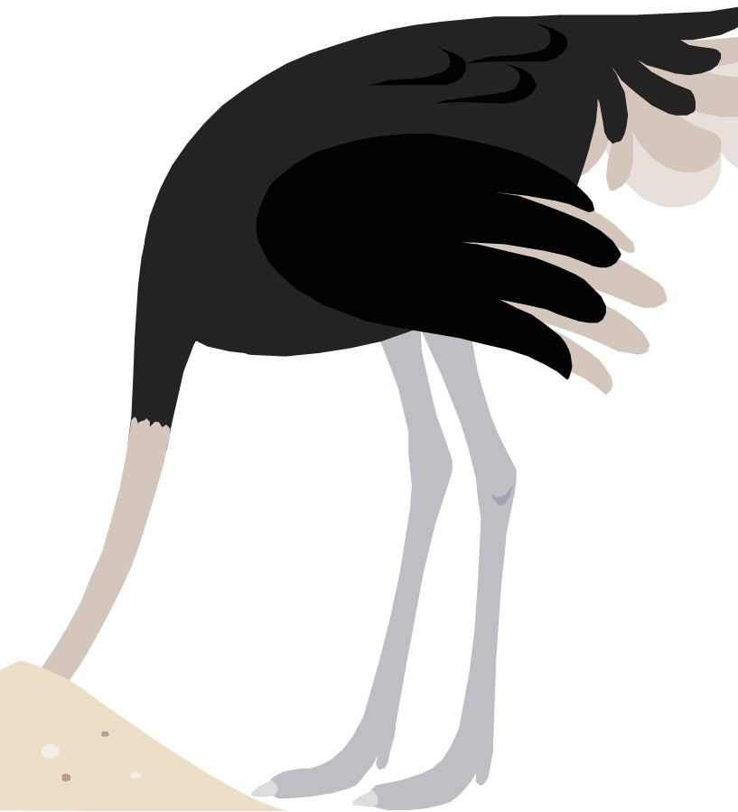 the ostrich head in the sand with a criminal history